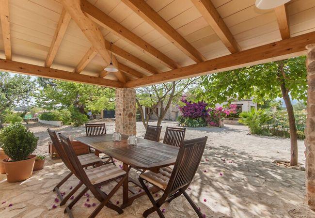 Mesa para 6 en terraza cubierta con vistas al jardín