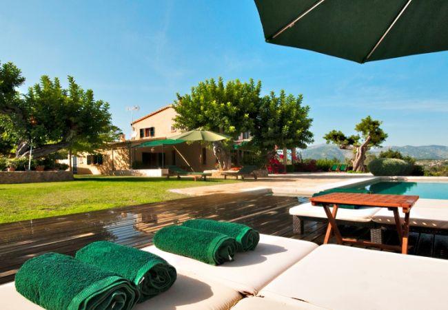 Tumbonas, piscina y jardín con vistas