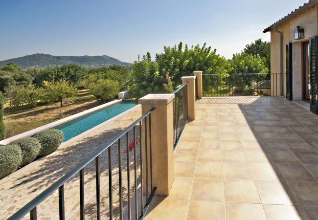 Terraza, jardín y piscina