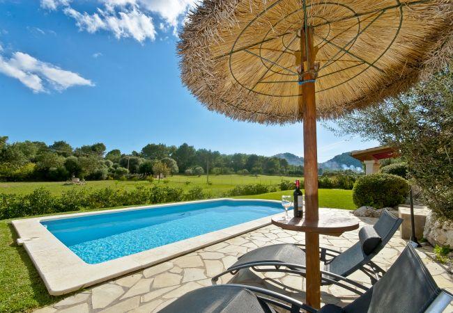 Tumbonas y sombrilla junto a la piscina