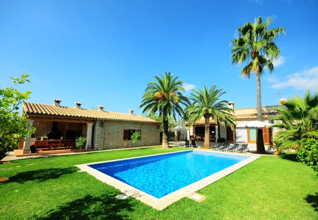 Jardín, palmeras y piscina