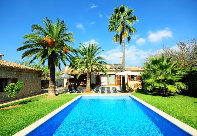 Piscina y jardín con palmeras