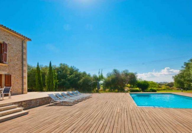 Terraza, piscina y vistas al jardín