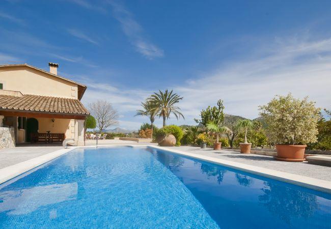 Gran piscina y jardín