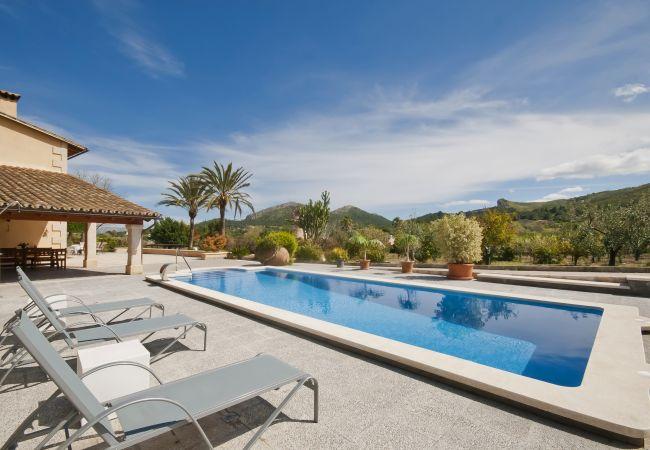 Tumbonas junto a la piscina y vistas espectaculares
