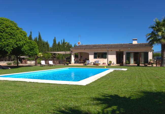 Amplio y verde jardín con piscina.