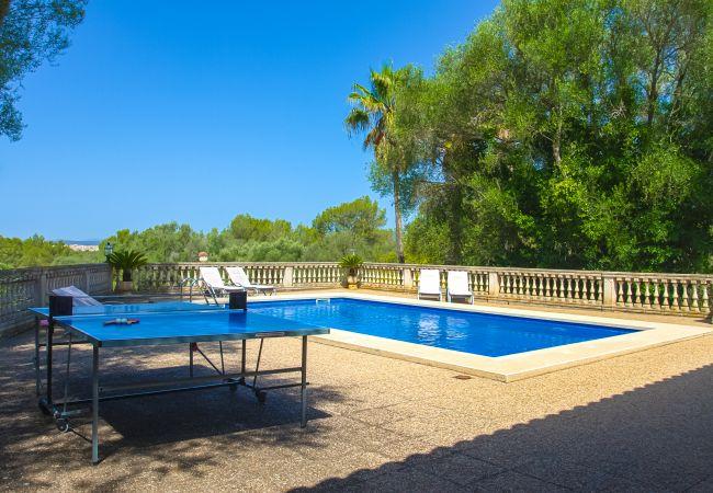 Mesa de ping pong junto a la piscina