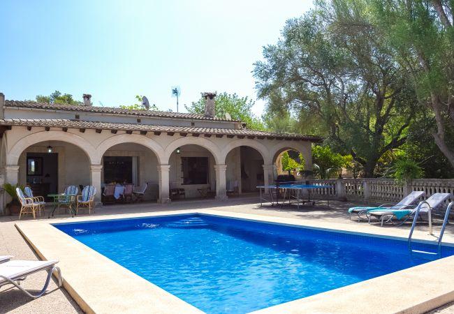 Terraza con piscina y tumbonas