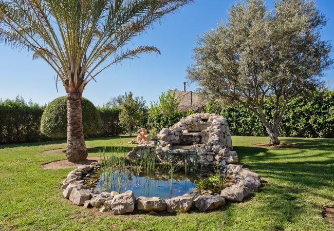 Bonito estanque en el jardín en Lloseta
