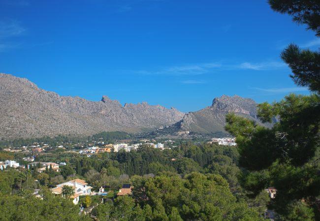 Blick auf den Berg von Puerto Pollensa von der Terrasse