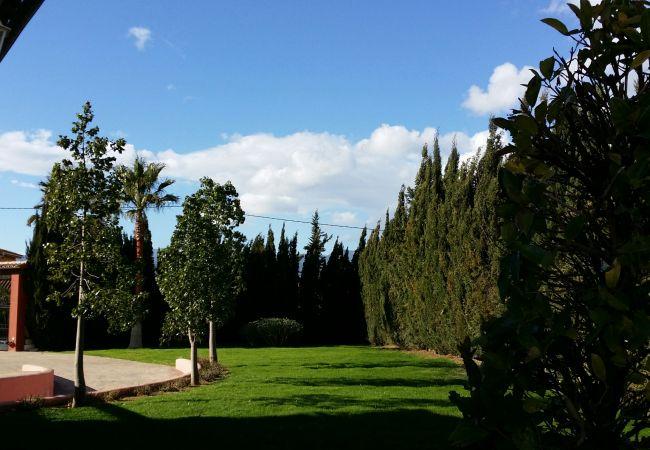 Geräumiger und gepflegter Garten