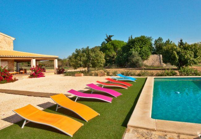 Pool und Liegestühle mit Aussicht