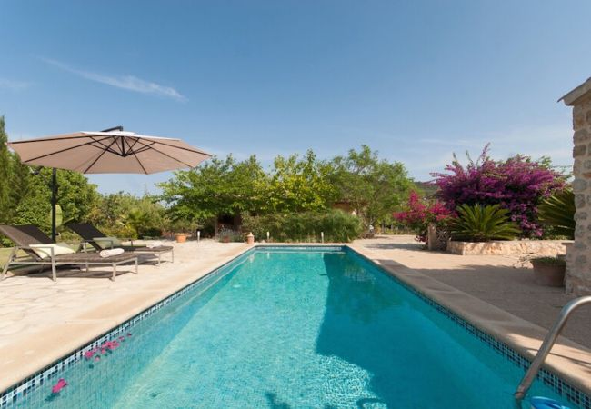 Schwimmbad mit Sonnenschirm