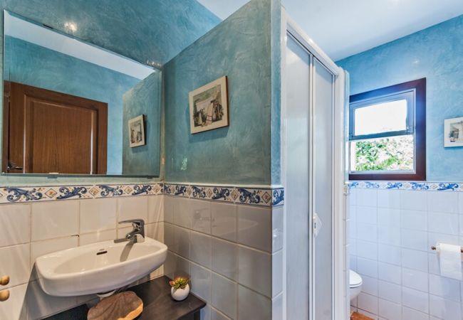 Badezimmer mit Dusche und Leinwand