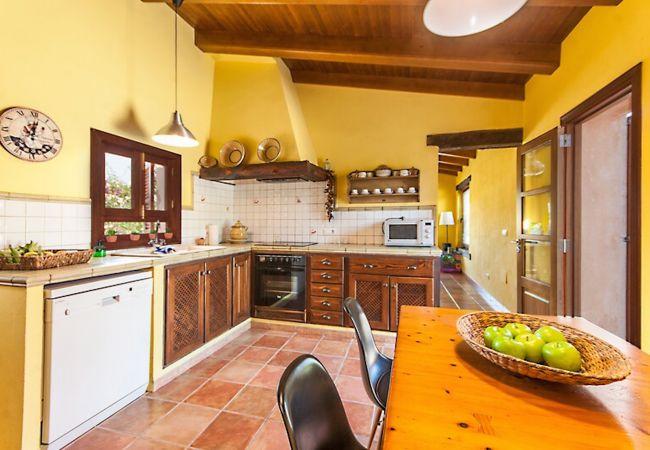 Voll ausgestattete Küche mit Außenzugang