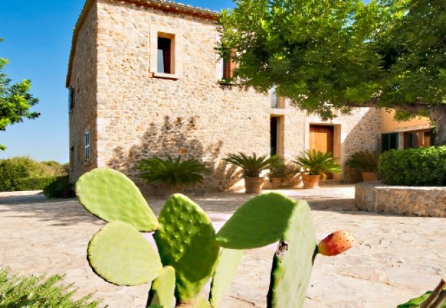 Fassade und Eingang mit Pflanzen