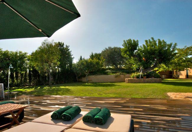 Garten und Liegestühle