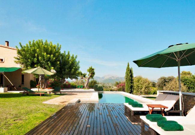 Blick vom Pool und Garten