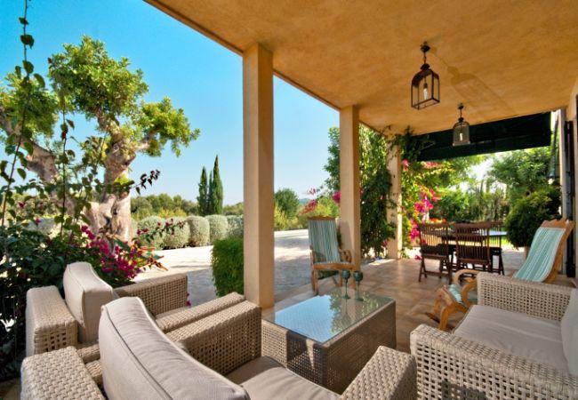 Terrasse mit Sofas und Sesseln zum Entspannen