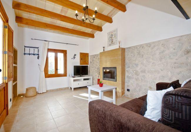 Wohnzimmer mit Sat-TV und Schlafsofa