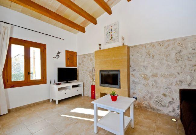 Wohnzimmer mit Kamin und Satelliten-TV