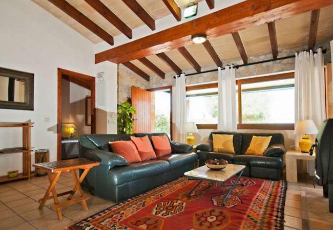 Wohnzimmer mit Sofas und Sat-TV