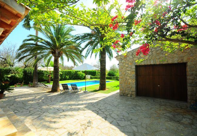 Eingang mit Palmen