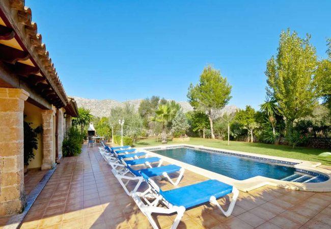 Schwimmbad und Garten mit Liegestühlen