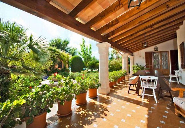 Porch mit Töpfen und Pflanzen