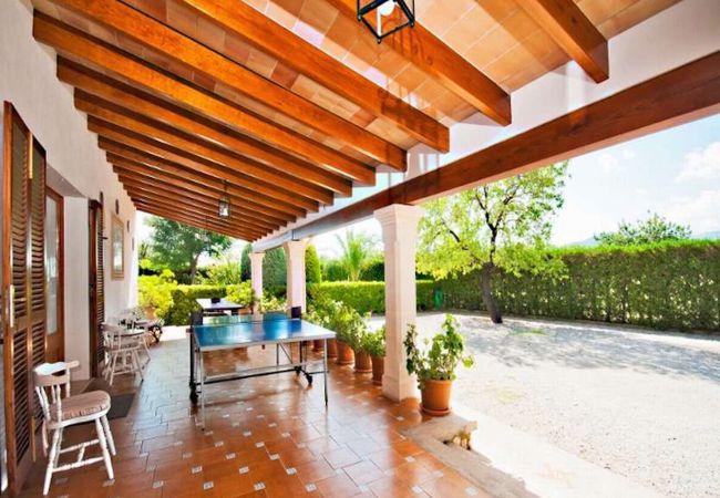 Überdachte Terrasse mit Tischtennisplatte. Enthält Schaufeln und Bälle