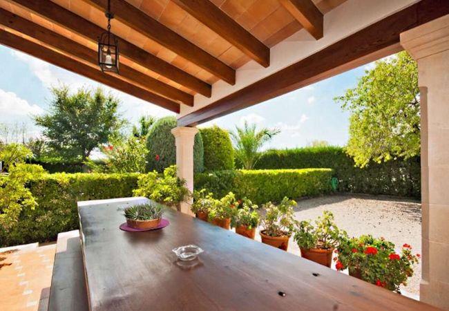 Terrasse mit Esstisch und Töpfen