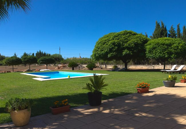 Schwimmbad im großen Garten der Finca