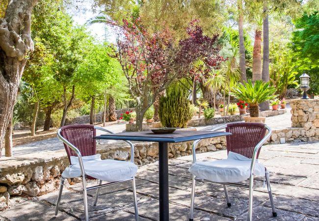 Gartentisch und im Schatten