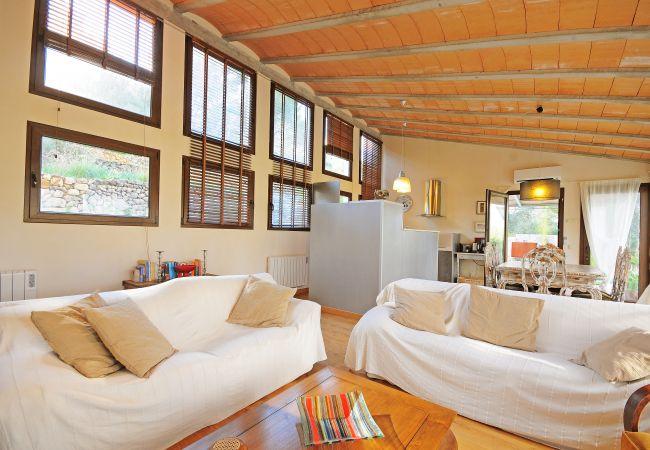 Sofas im hellen Wohnzimmer