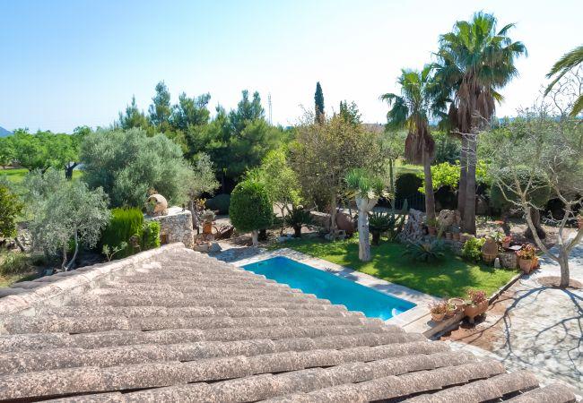 Blick auf die Natur und den Pool von der Terrasse