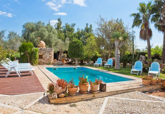 Pool, Garten und Liegestühle in Inca