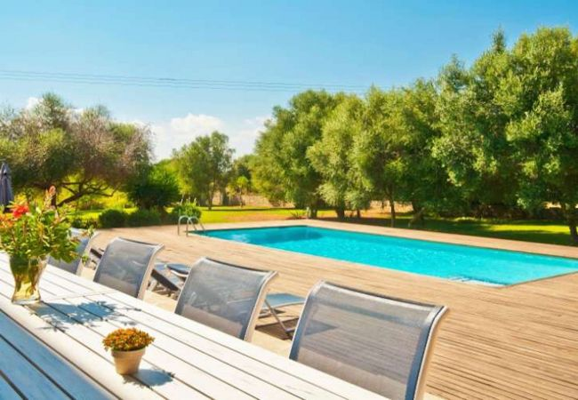 Pool and garden with table for 8 people