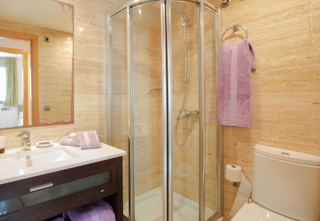 Bathroom with shower in the duplex B apartment