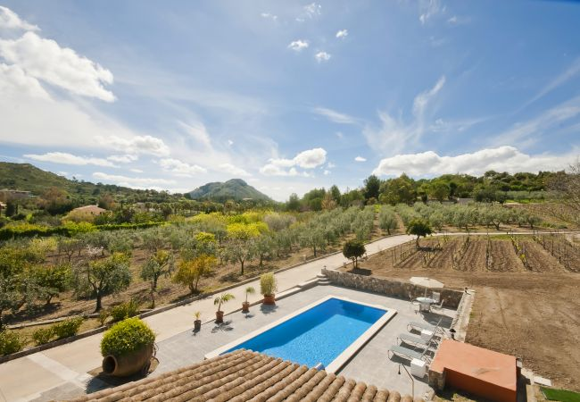 Stunning views of the pool area and nature