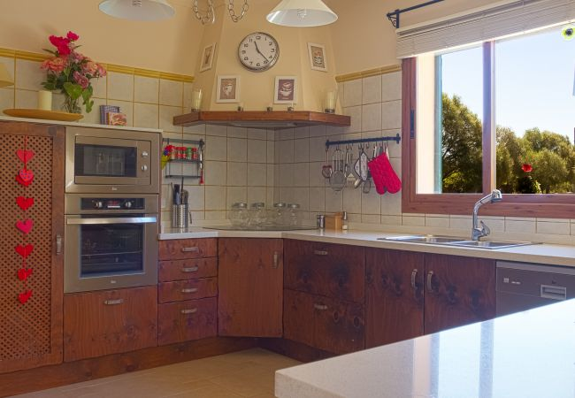Kitchen with view of the garden