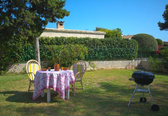 Garden and barbecue