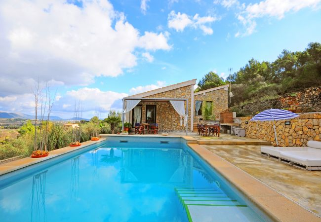 Swimming pool with views in Selva