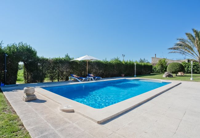 Pool of Villa Rafel in Lloseta