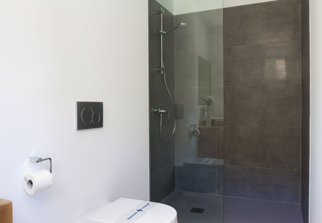 Shower tray with glass partition