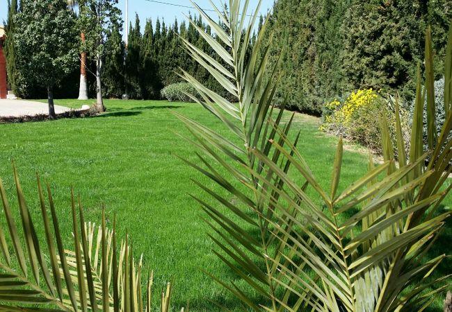 Jardin y árboles alrededor de la finca
